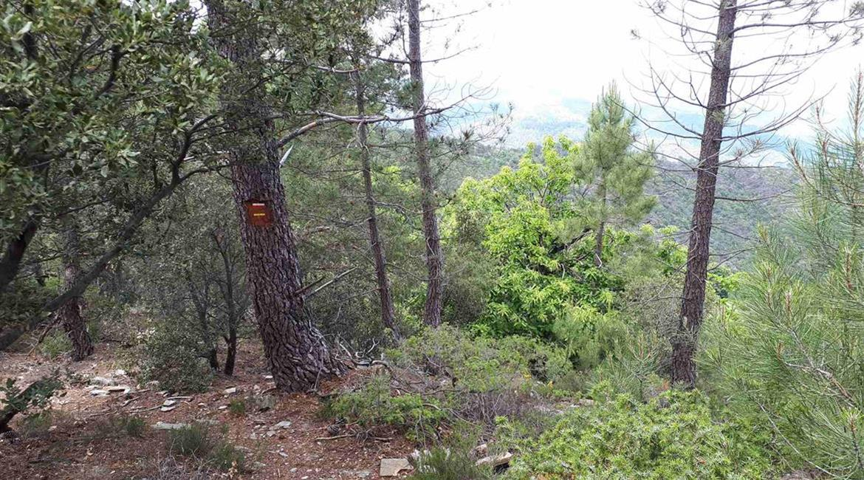Déviation du sentier de grande randonnée GR®70