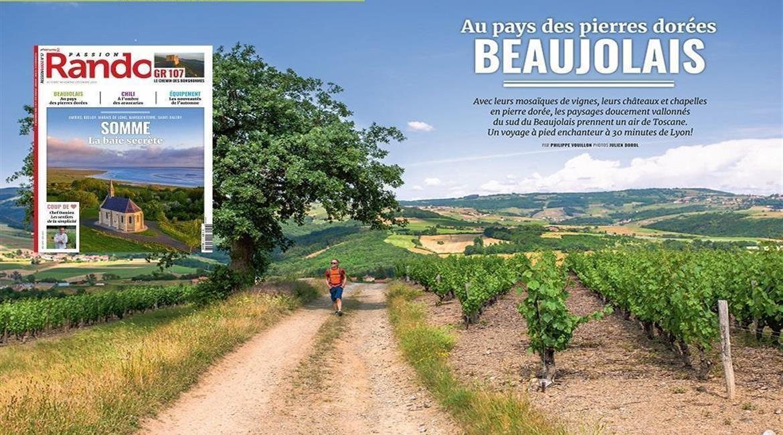 Le Beaujolais, au pays des Pierres Dorées